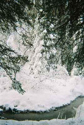 hypothermia-treatment-stream